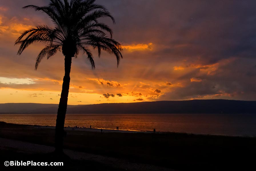 Sea of Galilee sunset, tb011212494